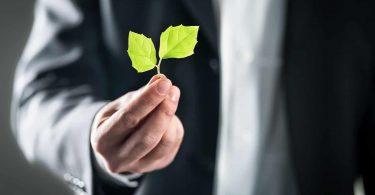 Beegreen - Sustentabilidade urbana