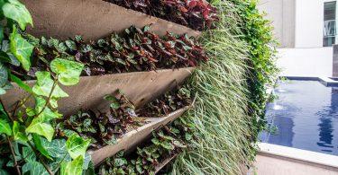 Jardim vertical sustentável