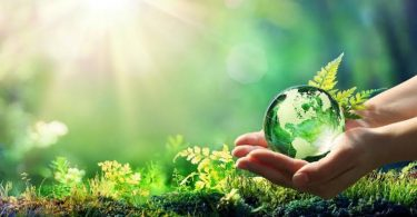 Cultura sustentável