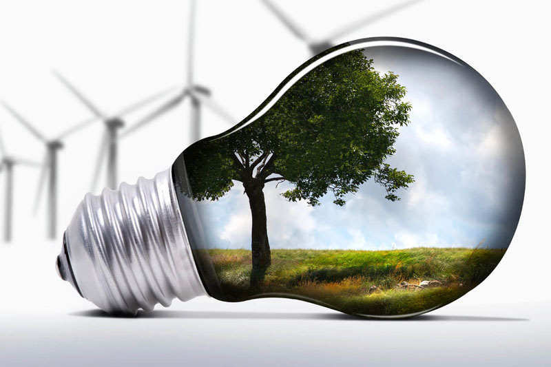 Cursos sobre sustentabilidade