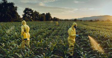 Agrotóxicos: benefícios e malefícios